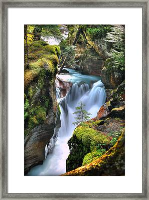 Out On A Ledge Framed Print by Ryan Smith