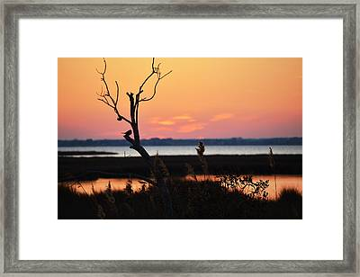 Framed Print featuring the photograph Ocean City Sunset Out On A Limb by Bill Swartwout