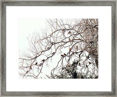 Framed Print featuring the photograph Out On A Limb First Snow by Barbara Chichester