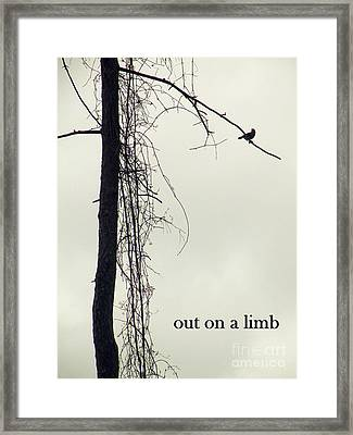 Out On A Limb Framed Print by Joe Jake Pratt
