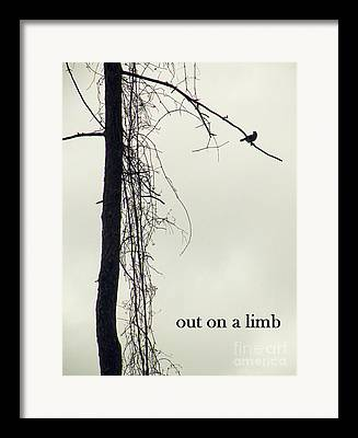 Out On A Limb Framed Prints