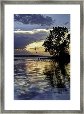 Out On Point Framed Print