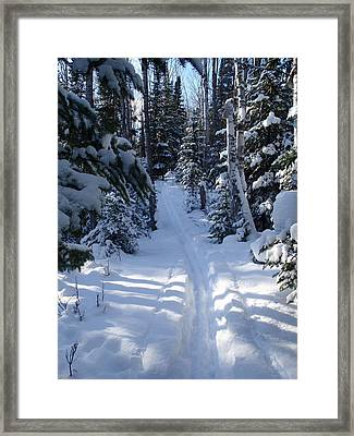 Framed Print featuring the photograph Out On The Trail by Sandra Updyke