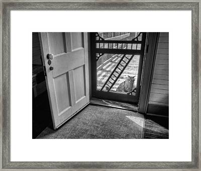 Out The Back Framed Print