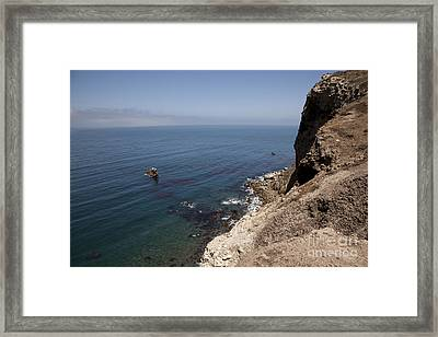 Out There Framed Print by Amanda Barcon