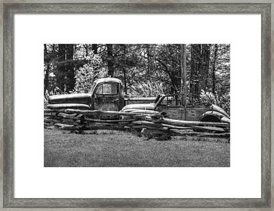 Out To Pasture Framed Print by Michael Allen
