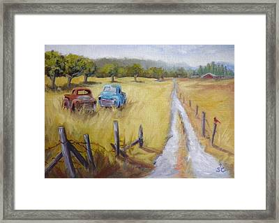 Out To Pasture Framed Print by Sharon Casavant