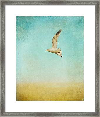 Out To Sea - Wildlife - Seagull Framed Print by Jai Johnson