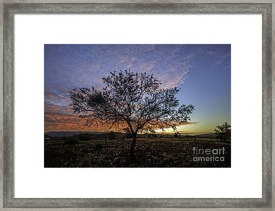 Outback Sunset  Framed Print