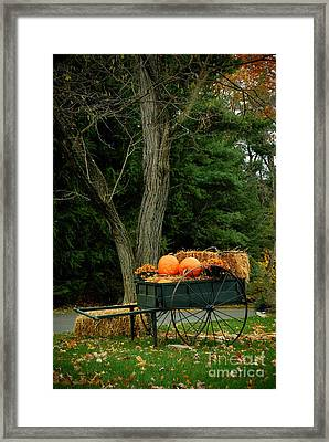 Outdoor Fall Halloween Decorations Framed Print by Amy Cicconi
