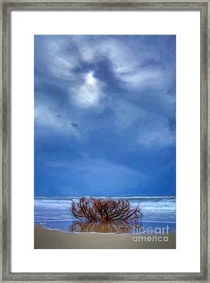 Outer Banks - Driftwood Bush On Beach In Surf II Framed Print by Dan Carmichael