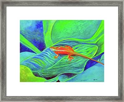Outer Banks Gecko Framed Print