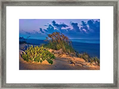 Outer Banks - Ocracoke Sand Dunes Oats Sunrise Framed Print by Dan Carmichael