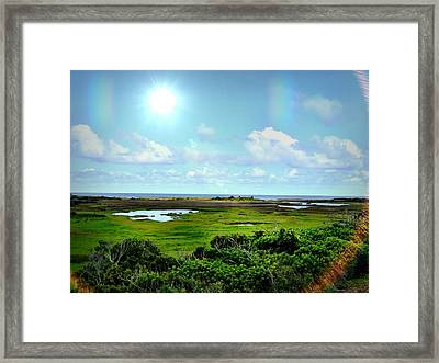 Outer Banks Tranquility Framed Print