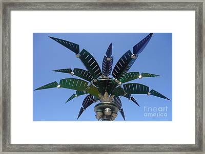 Outer Space Palm Framed Print by Ann Johndro-Collins