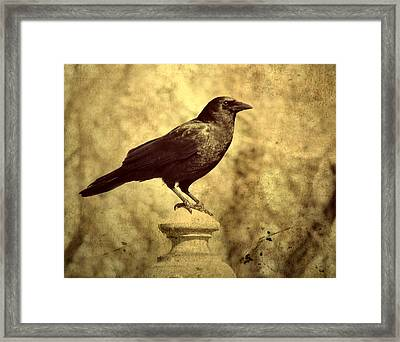 The Raven's Outlook Framed Print
