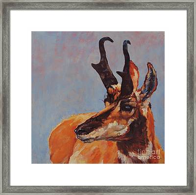 Outlook Framed Print
