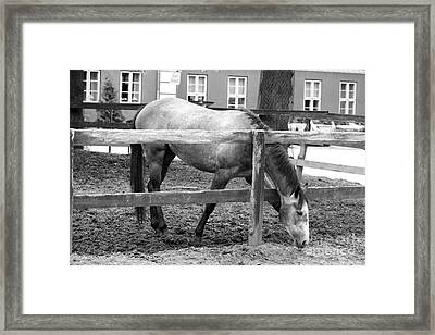 Outside The Border Framed Print by Christoffer Nygaard