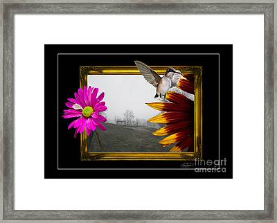 Outside The Box Framed Print by Cris Hayes