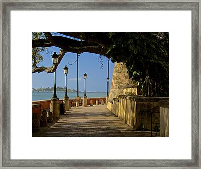 Outside The Walls Framed Print