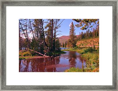 Outstanding Yellowstone National Park Framed Print by John Malone