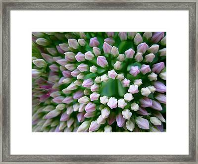 Oval And Angles Framed Print