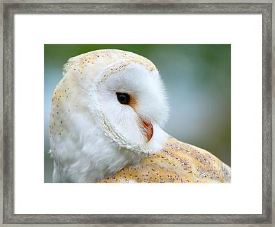 Over Her Shoulder  Framed Print by Heather King