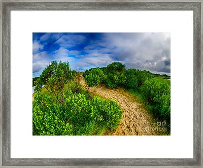 Over The Beaten Path Framed Print by Mark Miller