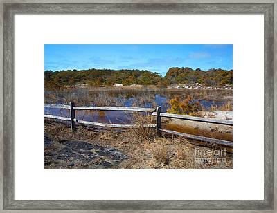 Over The Fence Framed Print by Robert Pilkington