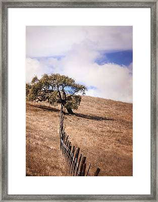 Over The Line Framed Print