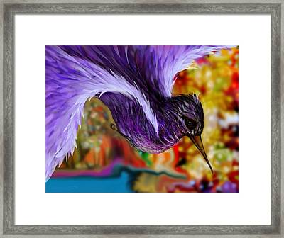 Over The Pond Framed Print