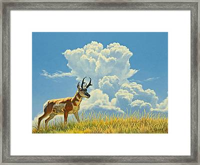 Over The Rise Framed Print by Paul Krapf