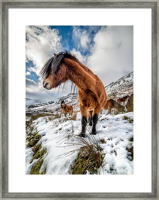 Over There Framed Print by Adrian Evans