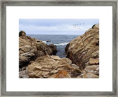 Overcast Day At Pebble Beach Framed Print