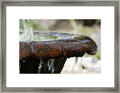 Overflowing Framed Print by Wendy Wilton