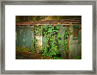 Overgrown And Abandoned 2 Framed Print by Barbara Snyder