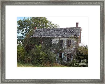Overgrown And Under Used Framed Print