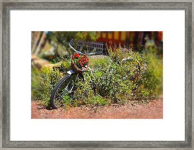 Overgrown Bicycle With Flowers Framed Print by Mike McGlothlen