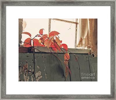 Overgrowth Framed Print