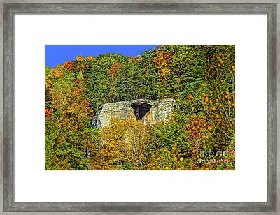 Overhanging Hangout Framed Print by Timothy Connard