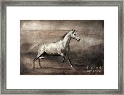 Overjoyed Framed Print by Dorota Kudyba