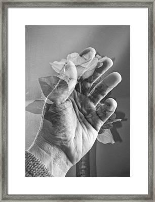 overlay...Infuse Framed Print by Tom Druin