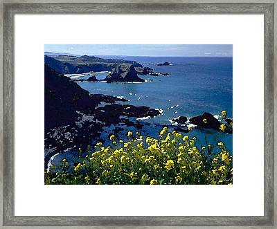 Overlook Point Framed Print by Cole Black