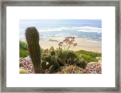 Overlooking San Elijo Beach Framed Print