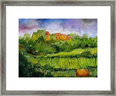 Overlooking The Vines Framed Print