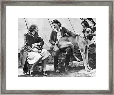 Oversized Lap Dog Framed Print by Underwood Archives