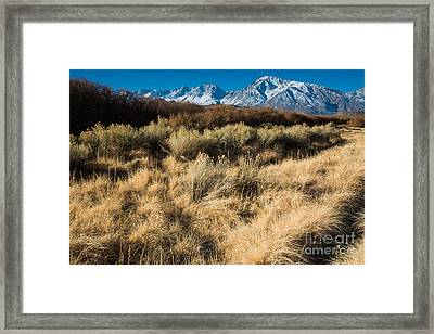 Owens River Valley And Sierra Nevada Range Framed Print