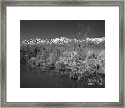 Owens Valley Framed Print