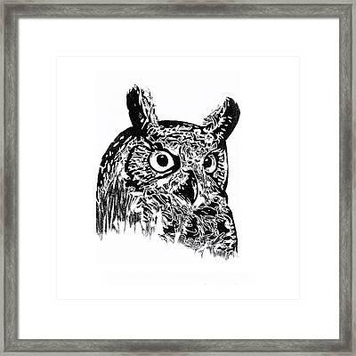 Owl 002 Framed Print