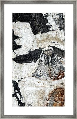 Owl Framed Print by A K Dayton